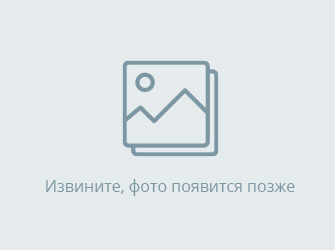 РУЛЕВОЙ РЕДУКТОР НА MITSUBISHI CANTER FE73DB 4M51